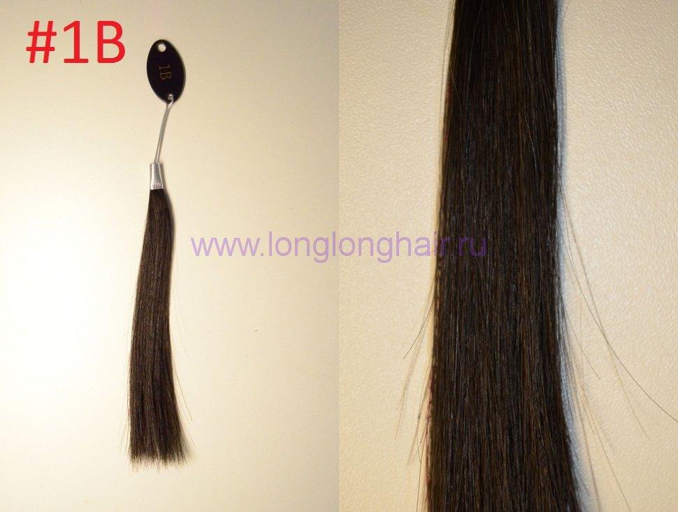 Типы волос в срезе